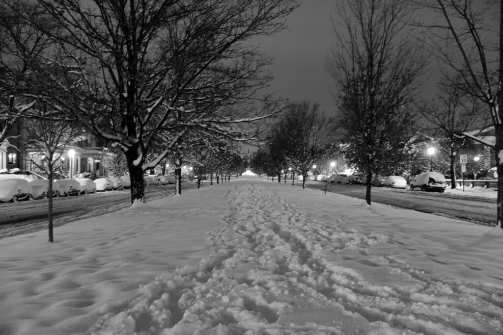 Richmond Snow On Monument Ave