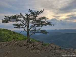 Raven's Roost on the Blue Ridge Parkway in Virginia